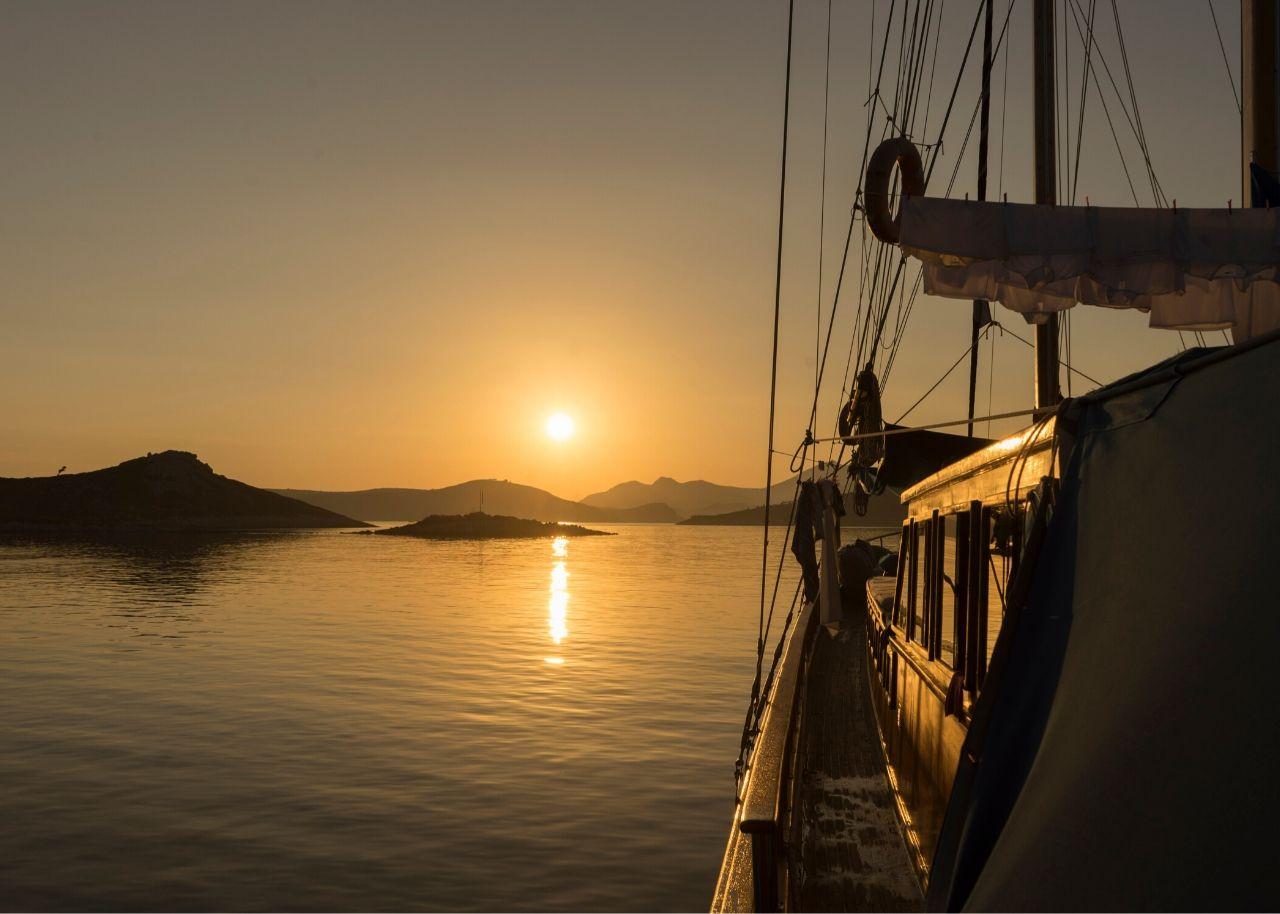 Blui Cruise 4